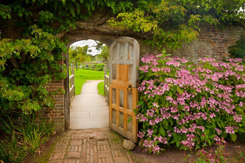Walled Garden with Hydrangeas