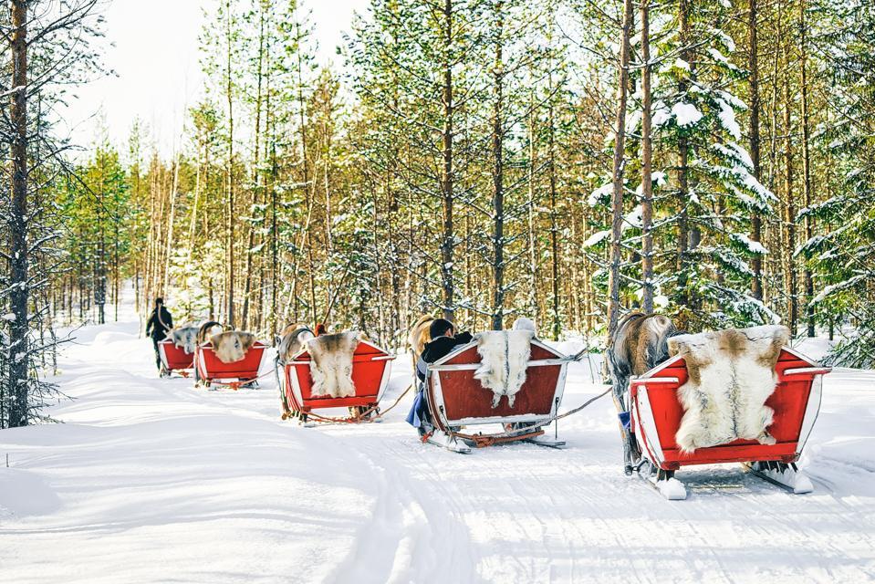 Reindeer sleigh in Finland Lapland in winter