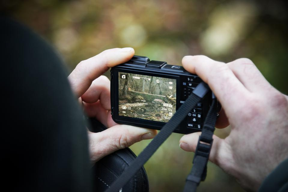 The Best Travel Cameras