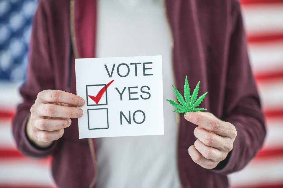 Vote to legalize