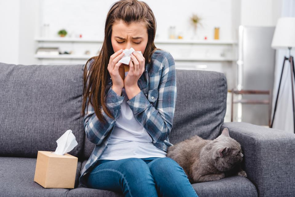 girl blowing nose in facial tissue while sitting with cat on couch