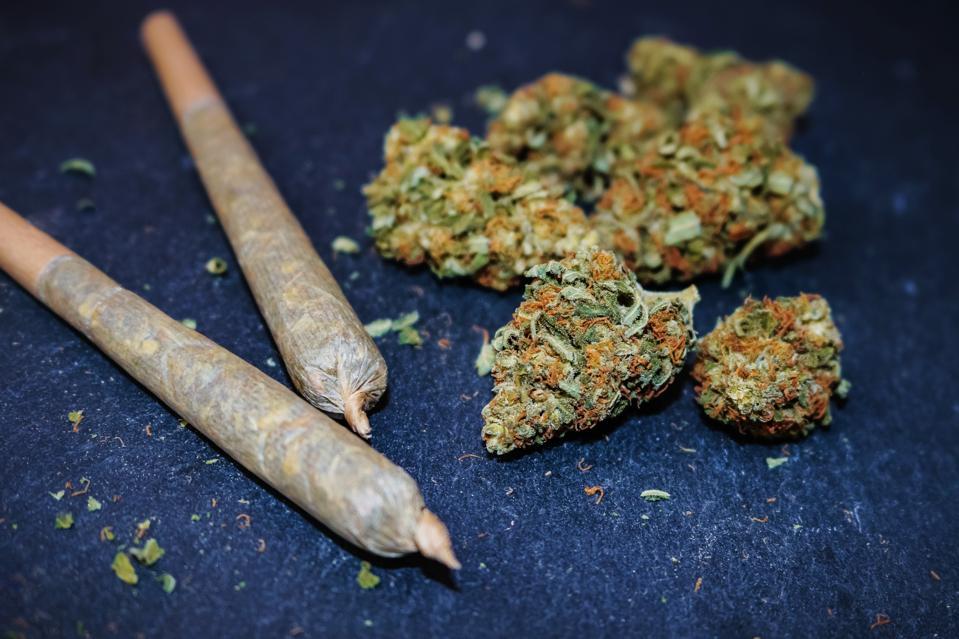 New York became the 15th state Monday to decriminalize marijuana.
