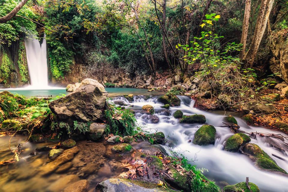 Banias river Israel