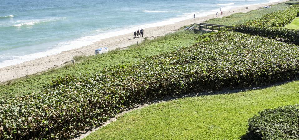 Hutchinson Island beach is where loggerhead turtle nesting areas can be found.