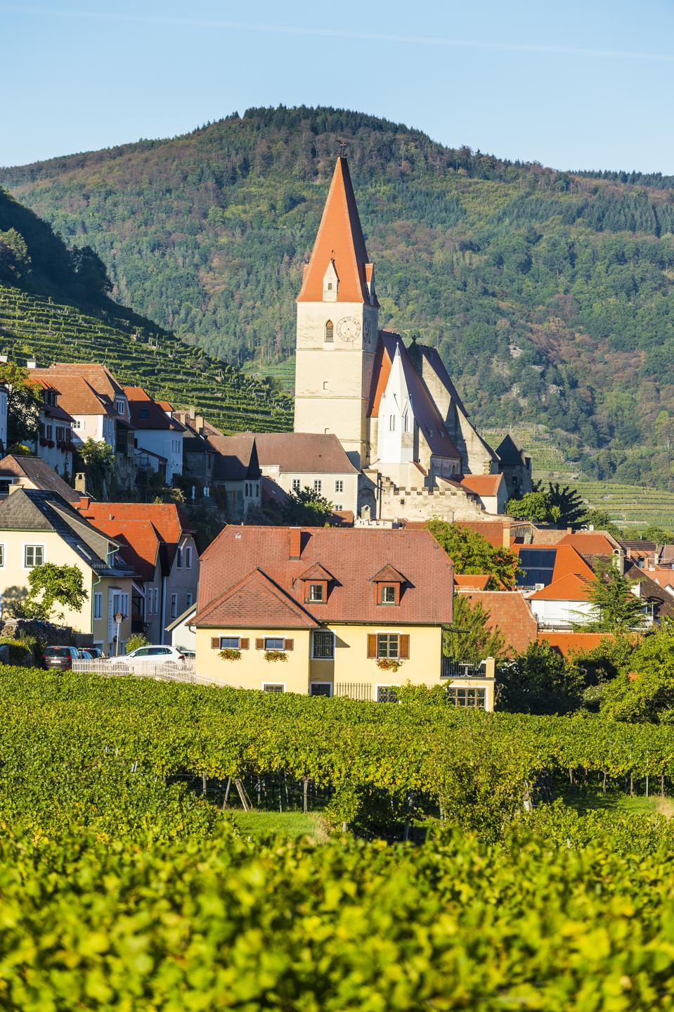 Austria, Wachau, parish church Mariae Himmelfahrt in Weissenkirchen in the vineyards on the Danube