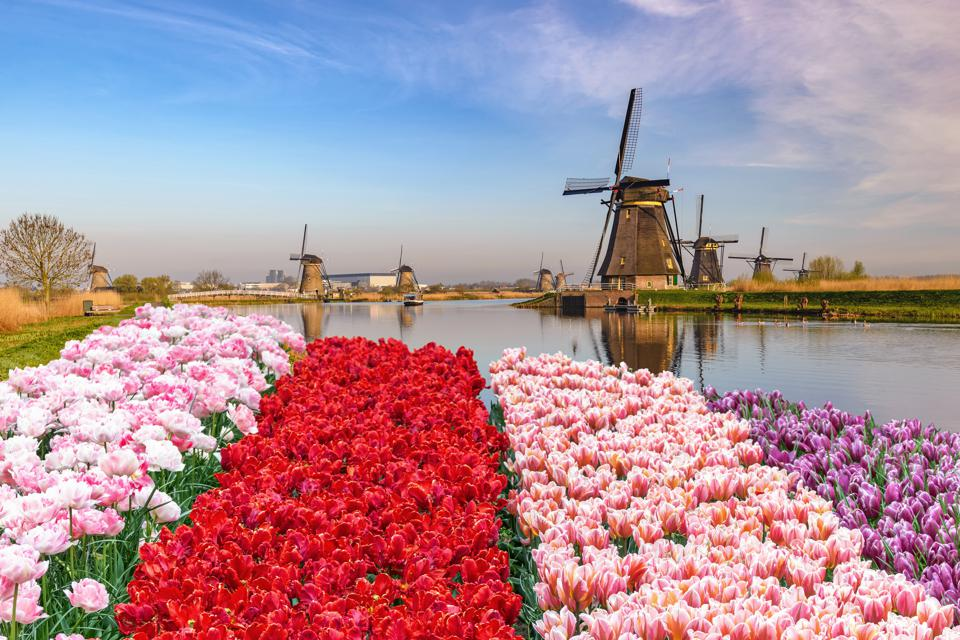 Five Underrated Dutch Cities To Tour Instead Of Amsterdam
