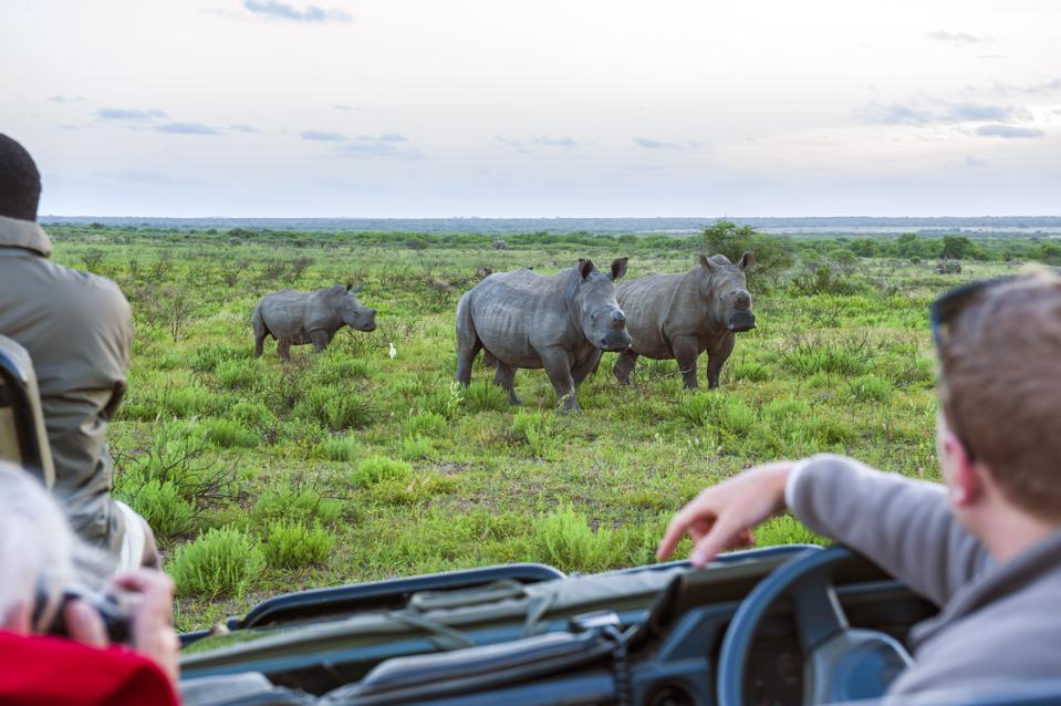 Luxury Eco Tourism Funds Development in South Africa