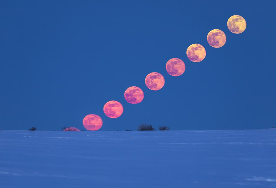 Pink /& Blue Wolf over the Moon