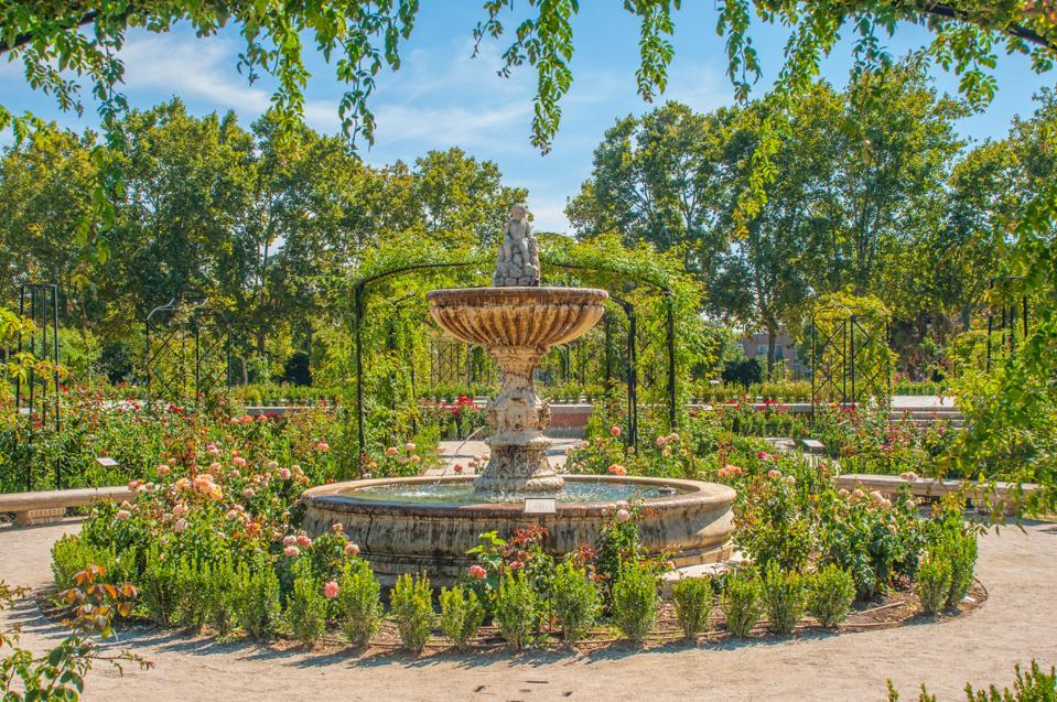 Rose Garden in El Buen Retiro Park in Autumn