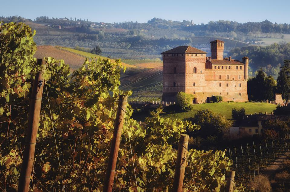 Sunset in autumn, during harvest time, at the castle of Grinzane Cavour, surrounded by the vineyards of Langhe, the most importan wine district of Italy