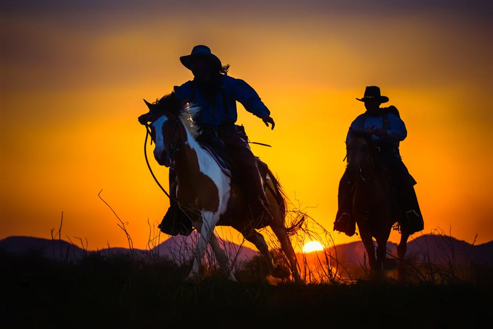 Silhouette Cowboy riding horse at sunset time.