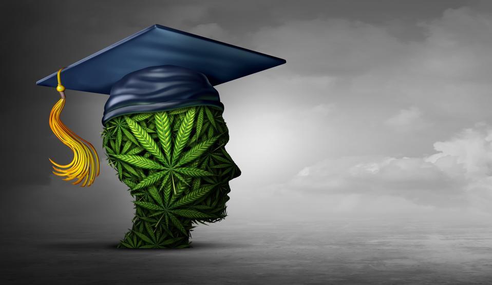 Cannabis Education