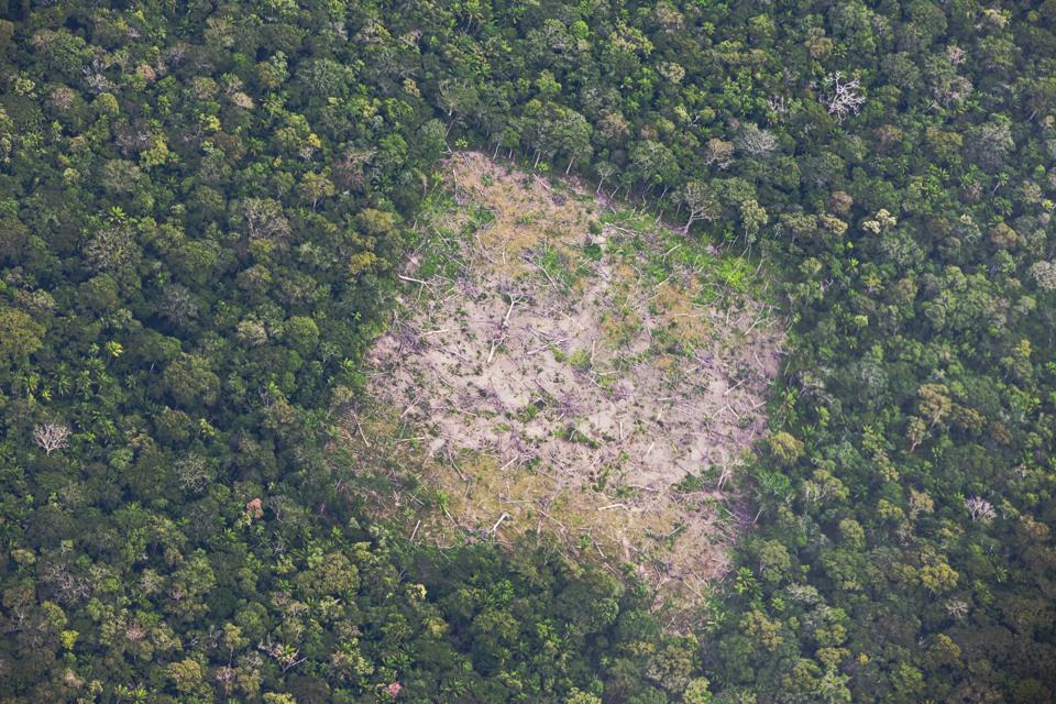 Aerial of Amazon rainforest destruction