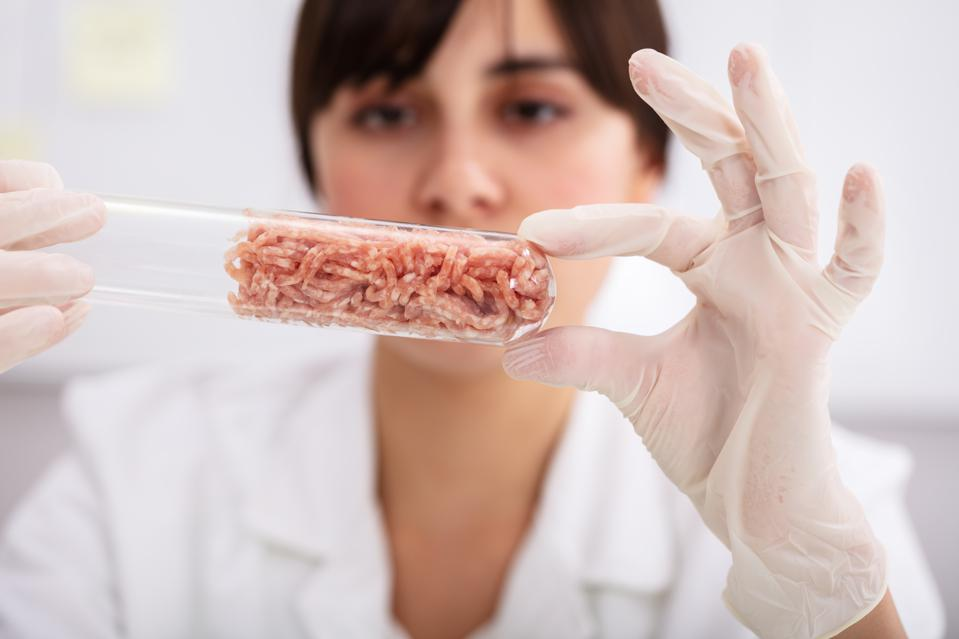 Female Scientist Holding Meat In Test Tube