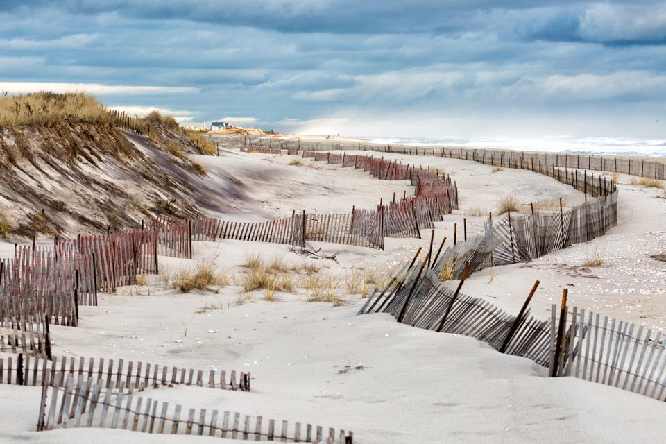 Fire Island Beach with Rows of Fences