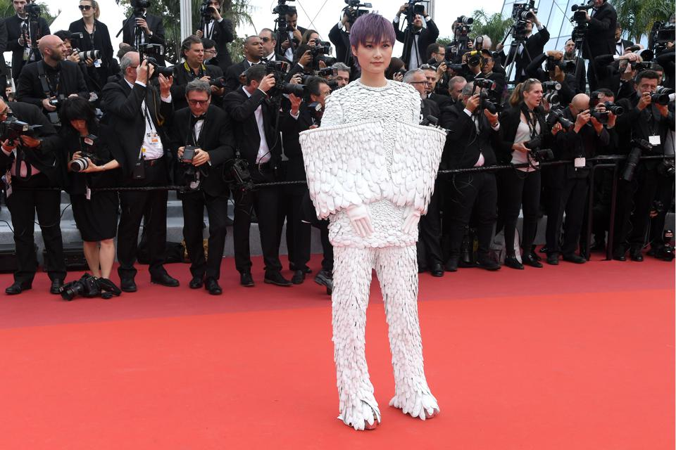 Image result for li yuchun feathers cannes