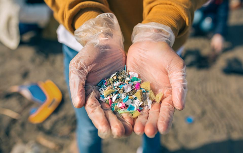 A pair of hands holding microplastics collected at the beach.