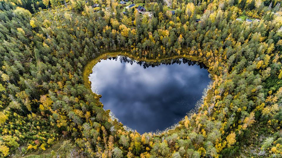 Heart-shaped lake surrounded by forest