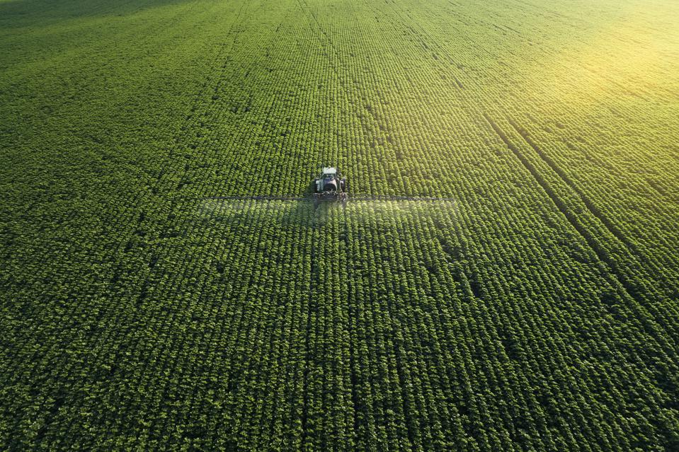 How Does Artificial Intelligence Help The Field Of Agriculture?