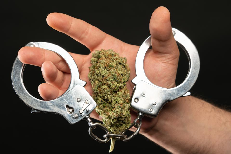 Man with drug bud and handcuffs closeup