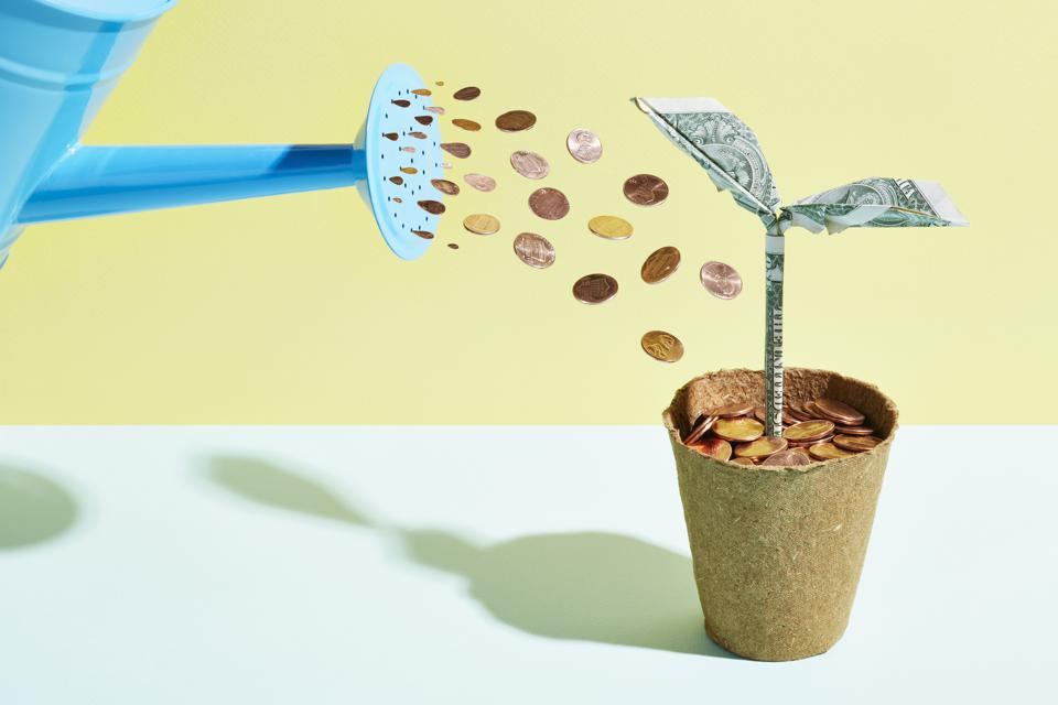 If you plan well, you can water even the measliest of seeds into something big.