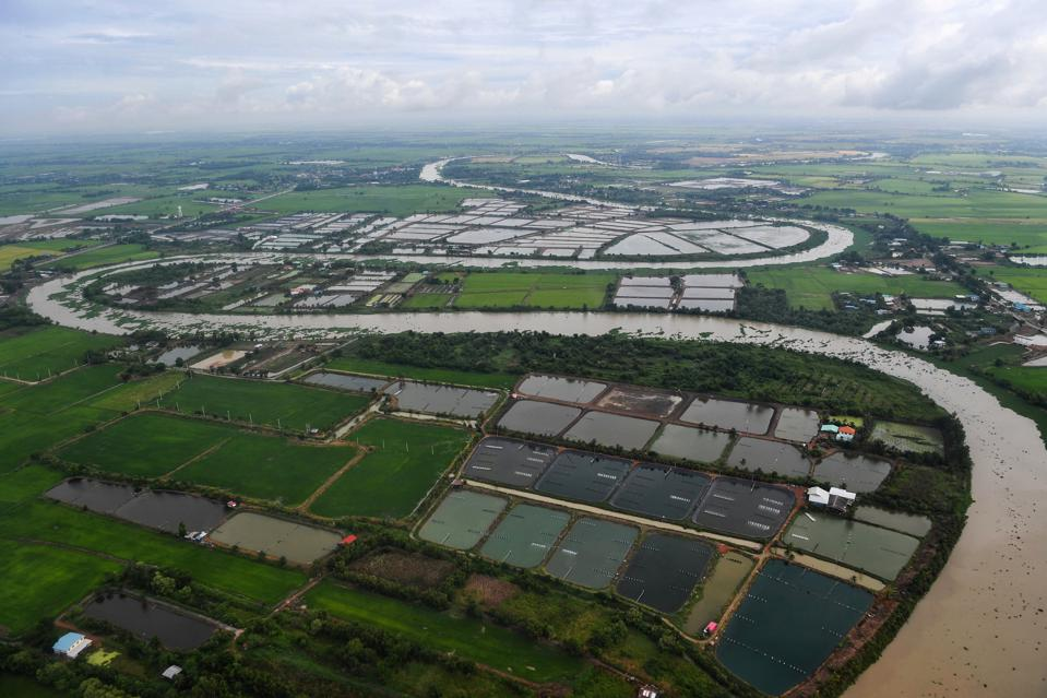 THAILAND-AGRICULTURE