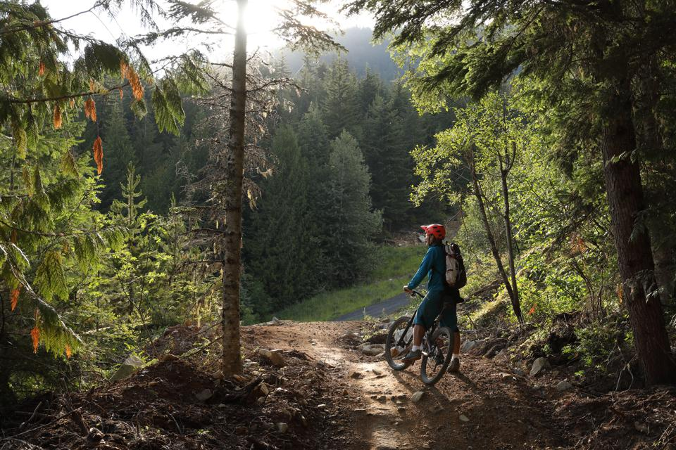 Mountain biker pauses on trail to enjoy view