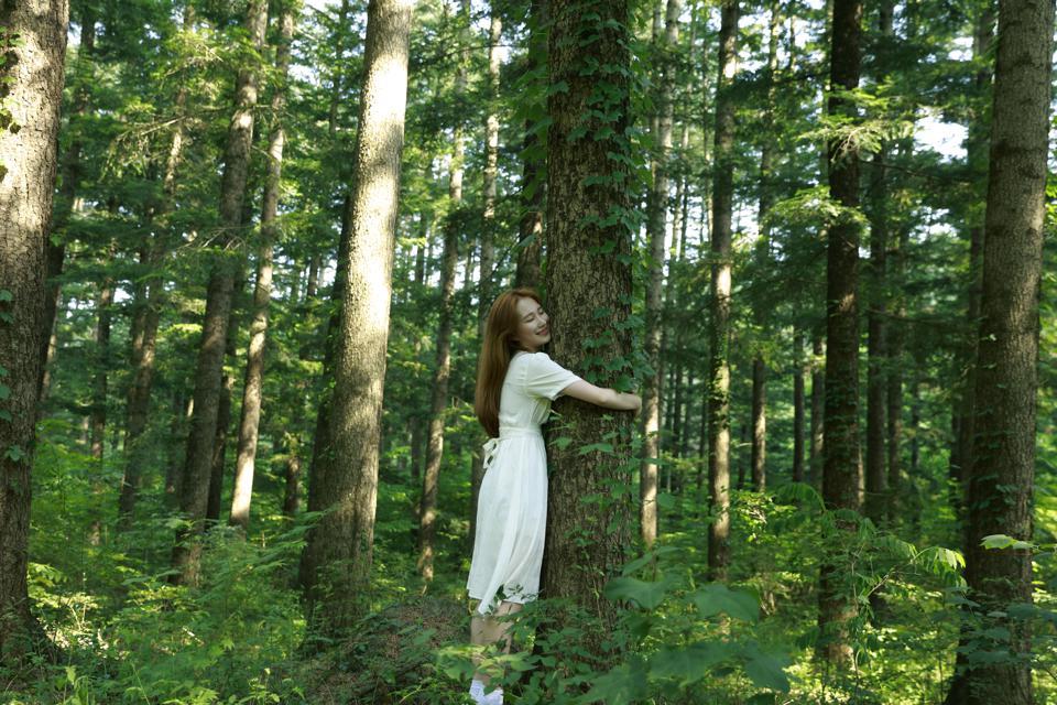 Young woman hugging tree trunk in forest