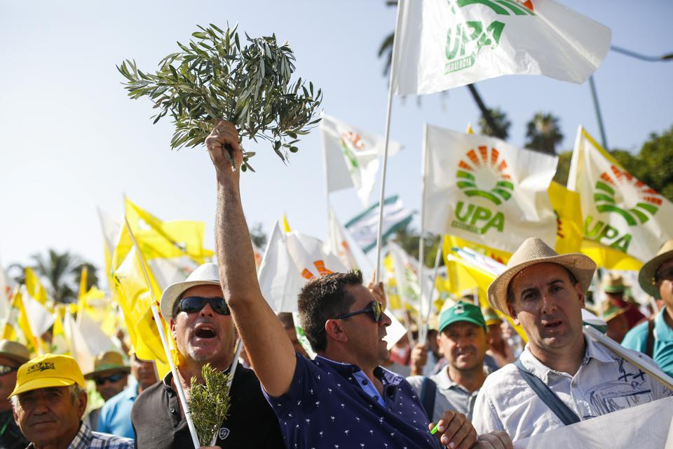 Demonstration Due To The Olive Oil Price Crisis