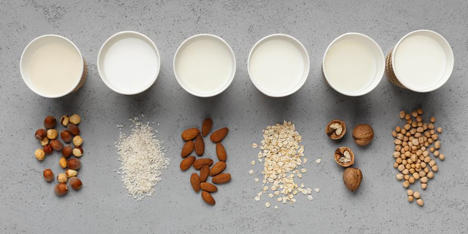 Best nondairy substitutes of milk concept