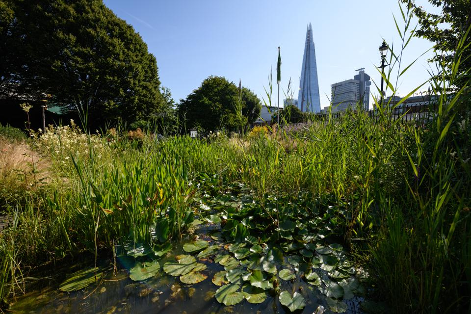 London's Green Spaces Are Celebrated With Garden City Festival