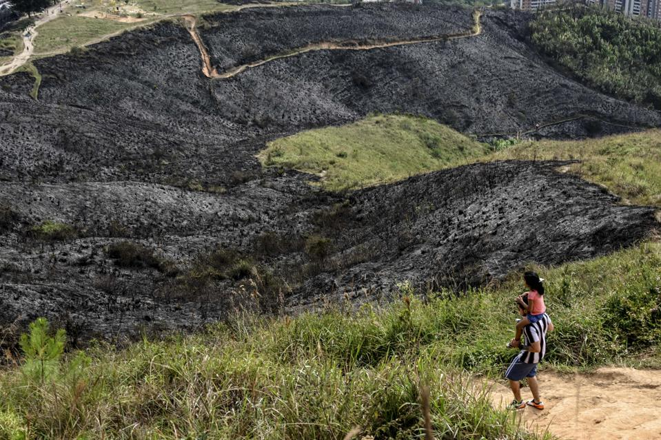 COLOMBIA-FIRE-ARSON-ENVIRONMENT
