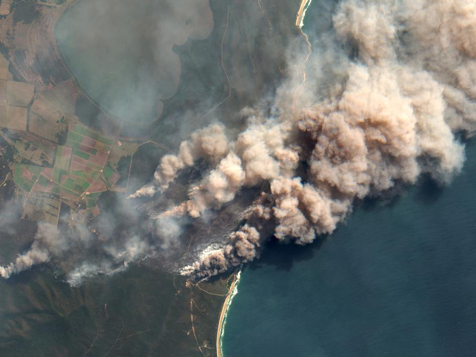 Wildfire Smoke Contains Living Microbes