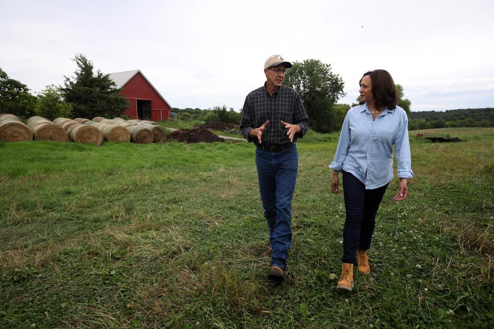 Presidential Candidate Kamala Harris Takes Campaign Bus Trip Across Iowa