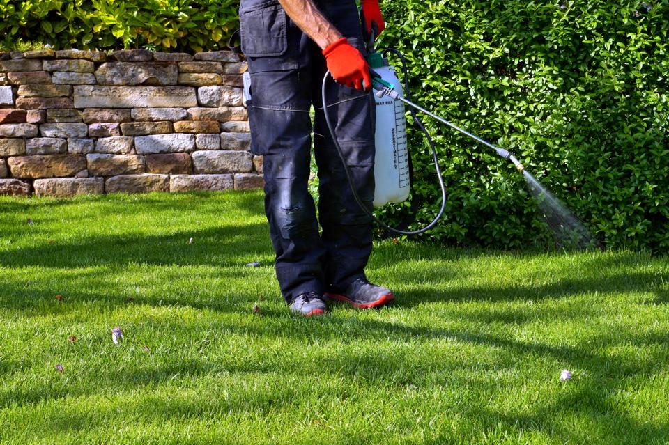 pesticide lawn spraying