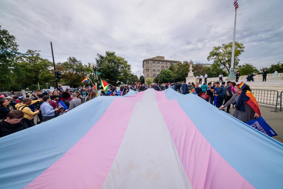 A giant Trans Flag unfurled outside the Supreme Court. 133...