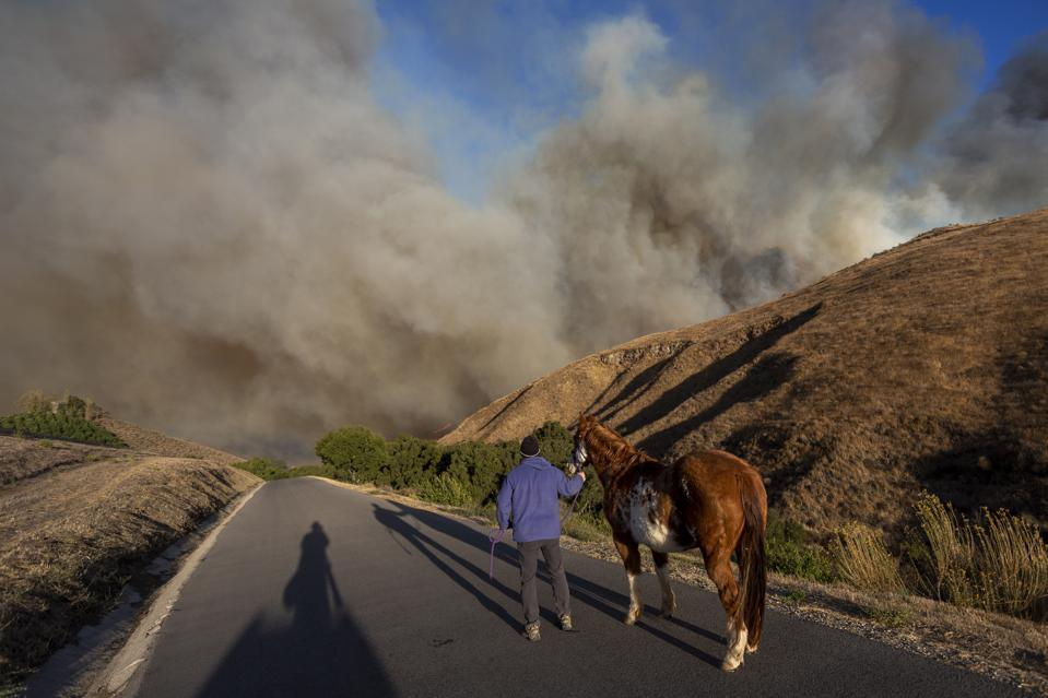 ″Extreme″ Santa Ana Winds Spark New Wildfires In Southern California