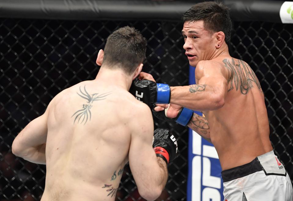 UFC 243: Potter v Pitolo