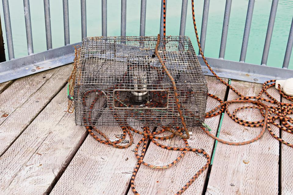 A crab pot lays on a deck with ropes