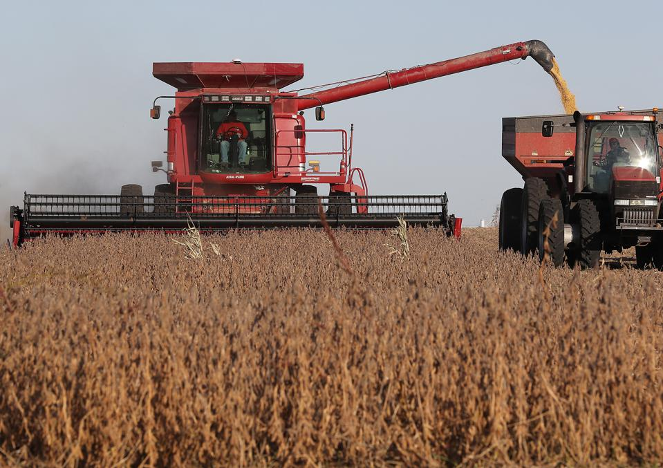 New Data: In Critical Month, U.S. Soybean Exports To China Still In The Tank, Farmers Lose A Second Year