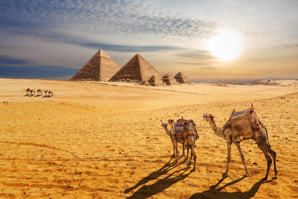 Sunset desert scenery, beautiful view of the Pyramids of Giza and camels, Egypt