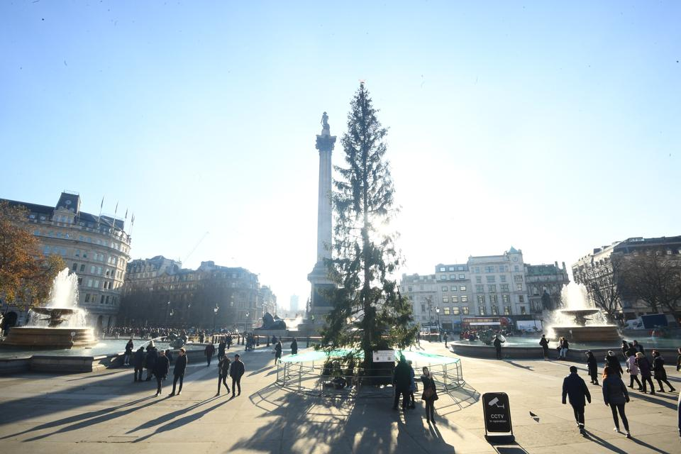 Oslo Mayor Reacts To Trafalgar Square Christmas Tree Criticism