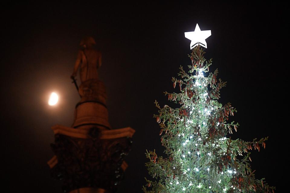 Norwegian christmas tree in Trafalgar Square, London