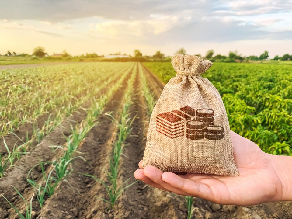 Tax-loss harvesting can save you money.