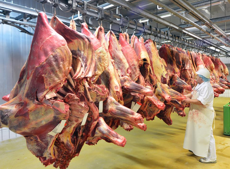 Pork carcasses cool at a slaughterhouse that makes sausages.