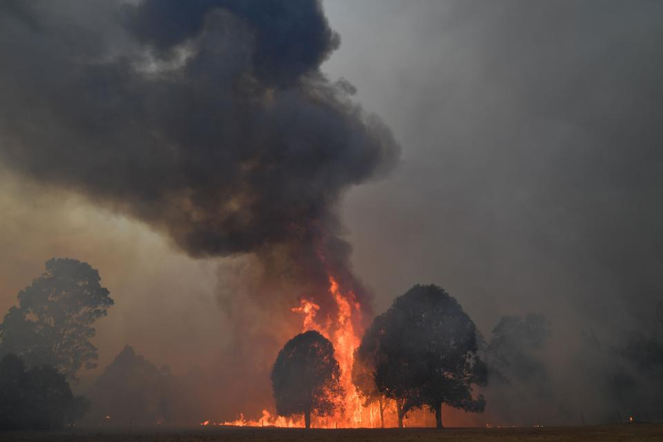 AUSTRALIAN BUSH FIRES Belch red flames and black smoke into sky