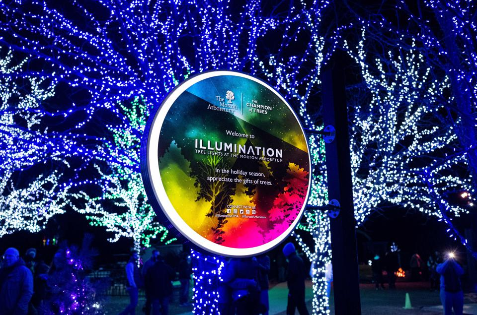 Illumination: Tree Lights at The Morton Arboretum.