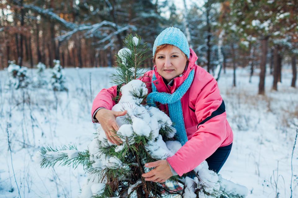 Winter walk. Senior woman hugging fir tree in forest enjoying snowy weather