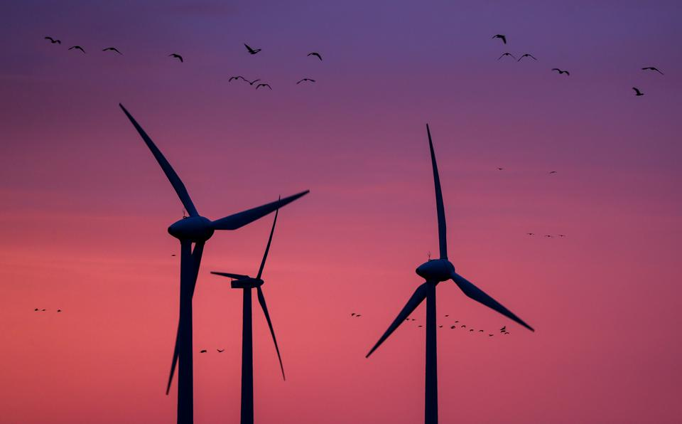 Wind turbines in the morning