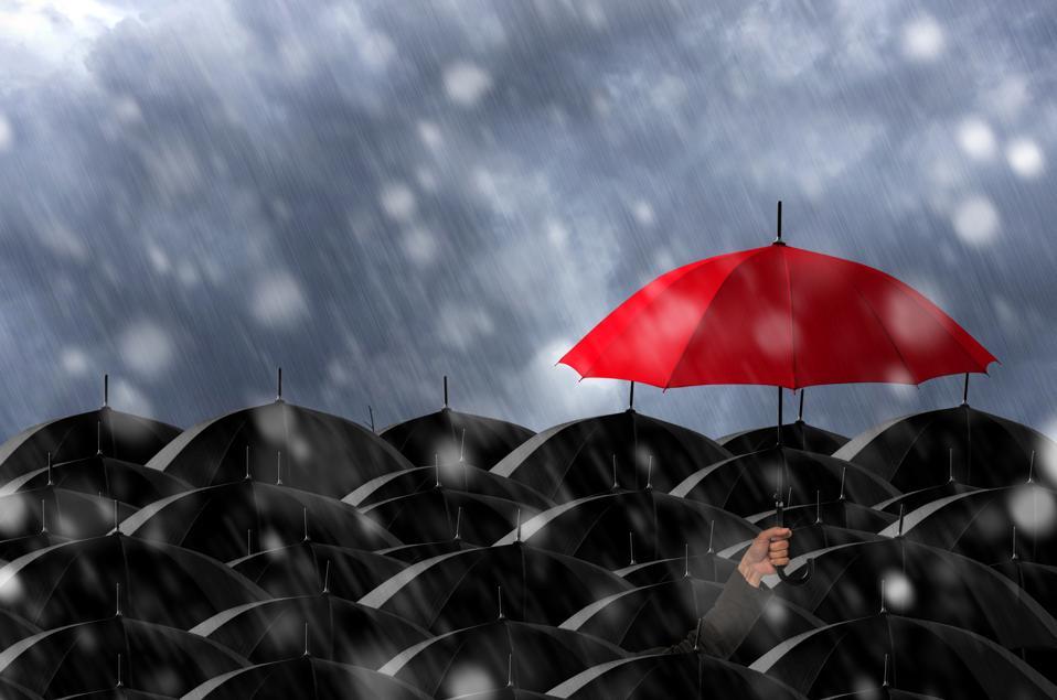 Cropped Hand Holding Umbrella During Rain